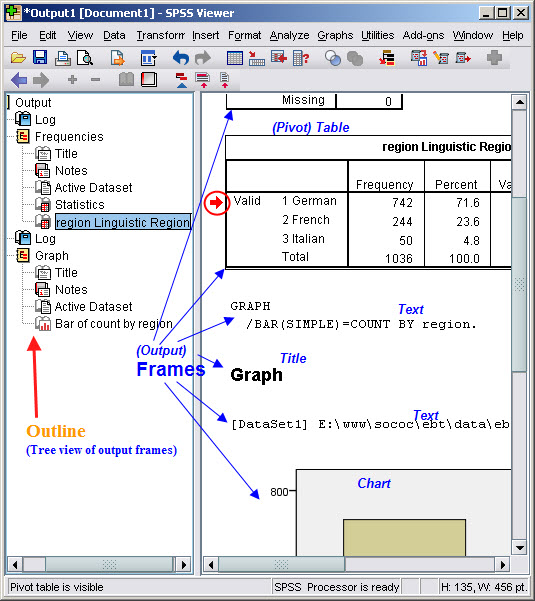 Working with the SPSS Viewer (basics)