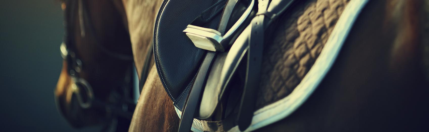 Les sports universitaires proposent 10 cours d'équitation en collaboration avec le manège d'Onex, ouverts à tous les niveaux.