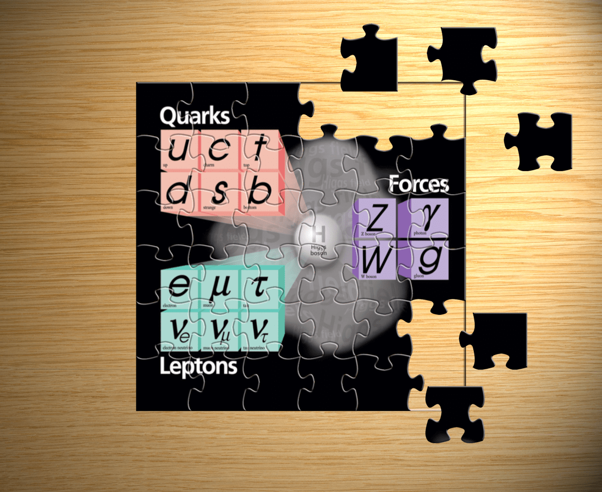 Standard Model puzzle