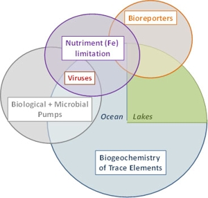 Overview research_300X280.jpg