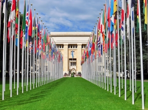 On May 4, UNOG staff members come to FTI