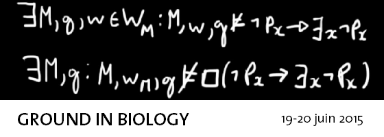 ground_biology.png
