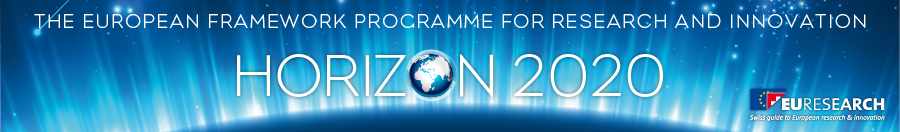 Euresearch_H2020-Banner for website.jpg